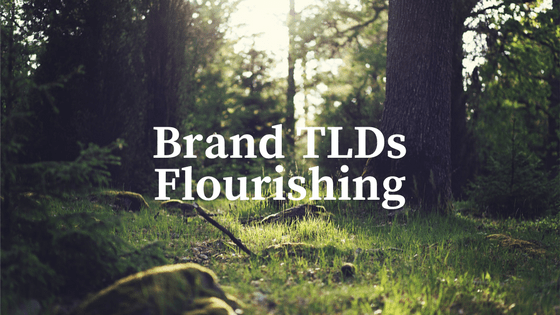 Brand TLD Use Cases Flourish (2)