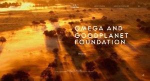 terra dot omega brand tld screenshot a